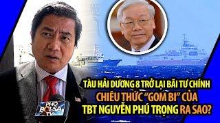"""HD-8 trở lại Bãi Tư Chính và chiêu thức """"gom bi"""" của TBT Nguyễn Phú Trọng"""