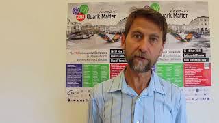 Quark Matter 2018 - Chris Allton