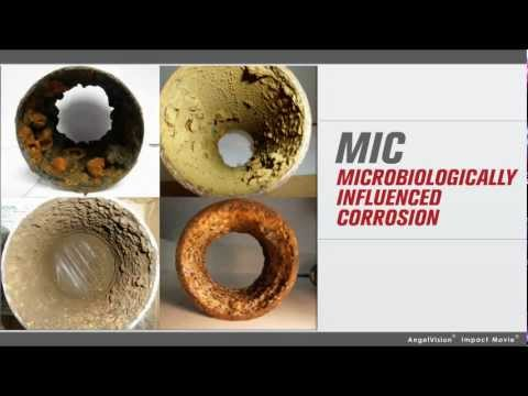 Microbiologically Influenced Corrosion Introduction Module