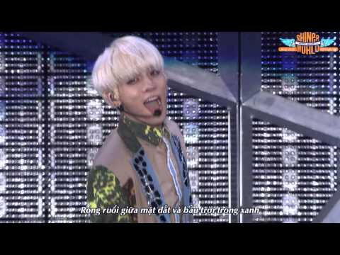 [Vietsub] 20. To your heart