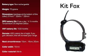 Watch video - GPS Collar for Kit Fox