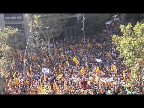 Manifestació independentista de Barcelona ANC I