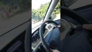 IMAĆE TRAUME DO KRAJA ŽIVOTA: Vozio je potpuno mirno auto, a onda mu je ODJEDNOM ova ZVER SKOČILA na haubu! (VIDEO)
