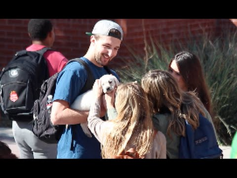PICKING UP GIRLS WITH A PUPPY!!