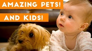 Most Amazing 1 Hour of Cute Kids And Pets 2018 | Funny Pet Videos!