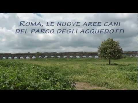 Roma, le nuove aree cani del Parco degli Acquedotti