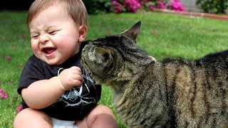 Best BABIES LAUGHING at ANIMALS! - CAUTION; Extremely funny compilation! - YouTube