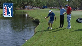 Ian Poulter's reptile rendezvous at RBC Heritage