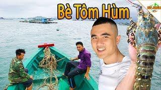 Lên Bè Tôm Hùm lặn bắt Tôm Hùm đem đi bán | Duy Jungle