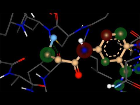 SeeSAR handles covalent binders