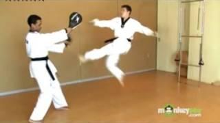 Basic Olympic Taekwondo