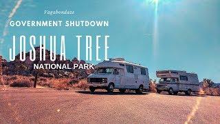 The Truth Joshua Tree National Park  I Goverment Shutdown