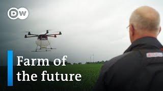 Drones, robots, and super sperm - the future of farming   DW Documentary (Farming documentary)