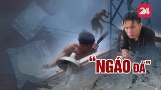Tiêu điểm: NGÁO - Tin Tức VTV24