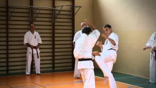 Karate BUDO