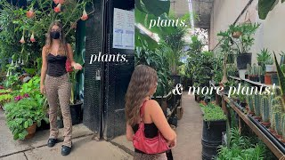 VLOG | plant shopping, vegan chocolate lava muffins, + new bar cabinet!