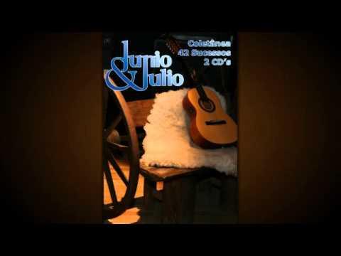 Baixar Músicas Junio e Julio 42 Sucessos Coletânia  CD 1 e 2