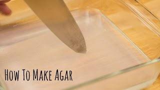 How to Make Agar