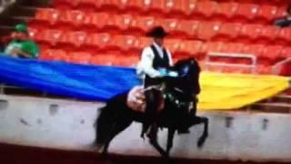 2012 URHOEA Country Show Pleasure World Championship Victory Pass