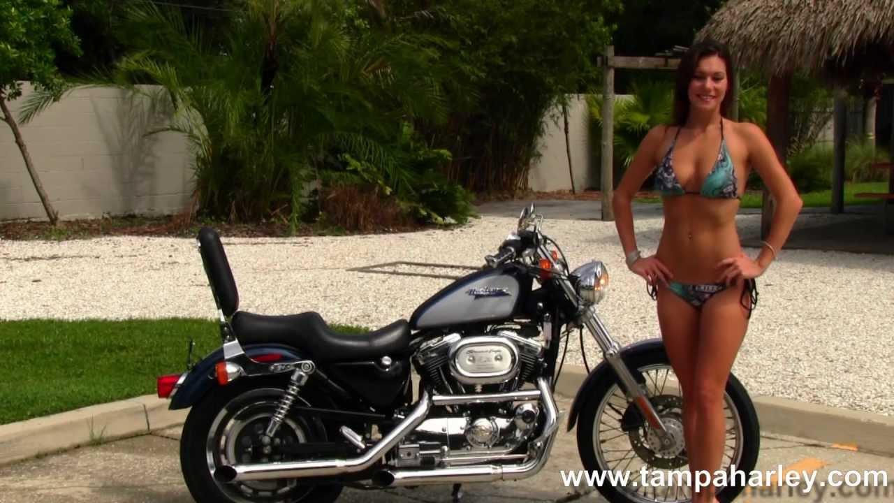 Used 2001 Harley Davidson 1200 Sportster Bikes For Sale