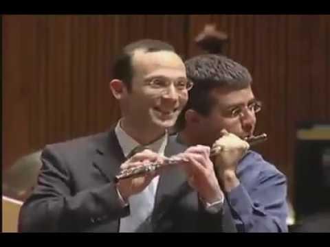Dois Profissionais na Flauta Transversal