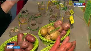 Представители областного правительства, фермеры и главы муниципальных районов обсудили развитие растениеводства