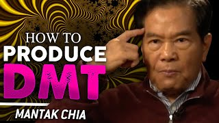 HOW TO PRODUCE NATURAL DMT - Mantak Chia   London Real
