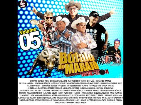 Baixar CD Badalasom, O Bufalo do Marajo Hi-Fi, Vol 05