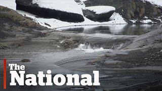 Glacier melt in B.C. at 'shocking' levels