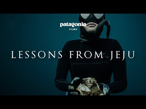 Lessons from Jeju | Freediving and…