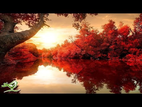 Beautiful Relaxing Music: Romantic Music, Piano Music, Violin Music, Cello Music ★115