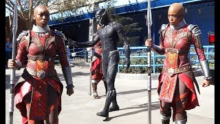 "NEW ""Black Panther"" T'Challa & Dora Milaje warriors arrive at Disneyland Resort"