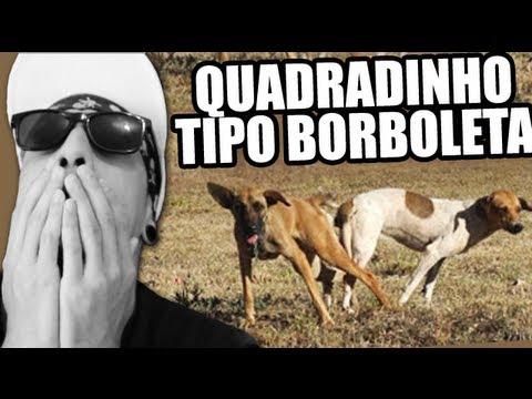 Baixar BONDE DAS MARAVILHAS - QUADRADINHO DE BORBOLETA (O RETORNO DO CÃO!)
