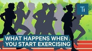 What Happens To Your Body When You Start Exercising Regularly