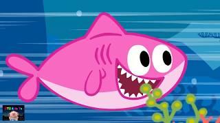 Baby Shark Clean Up Song + Nursery Rhymes Songs for Kids   BTB Kids Tv