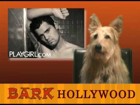 Bark Hollywood - Episode 9