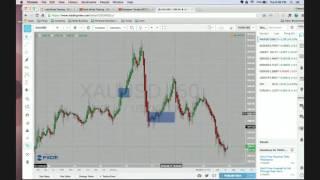 Gold Minds Training - Tick Tick Boom