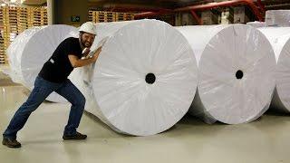 Como é fabricado o papel #Boravê