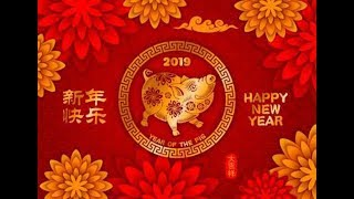 Chinese New Year Horoscope 2019 : Year Of The Lucky Pig