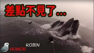 五個海洋的恐怖錄像