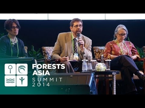 Forests Asia 2014 – Day 1 Discussion Forum, Low emissions development and societal welfare