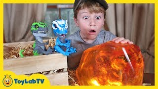 Giant Life Size Dinosaur vs UNTAMED T-Rex! Surprise Toy Dinosaurs & Showdown with Mystery Creature