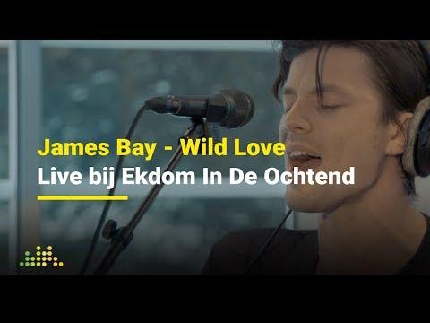 James Bay - Wild Love   Live bij Ekdom In De Ochtend