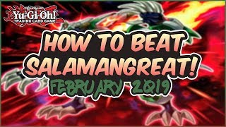 How to Beat Salamangreat & Everything You Need to Know About Them!