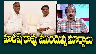 Prof K Nageshwar on options before Harish Rao..