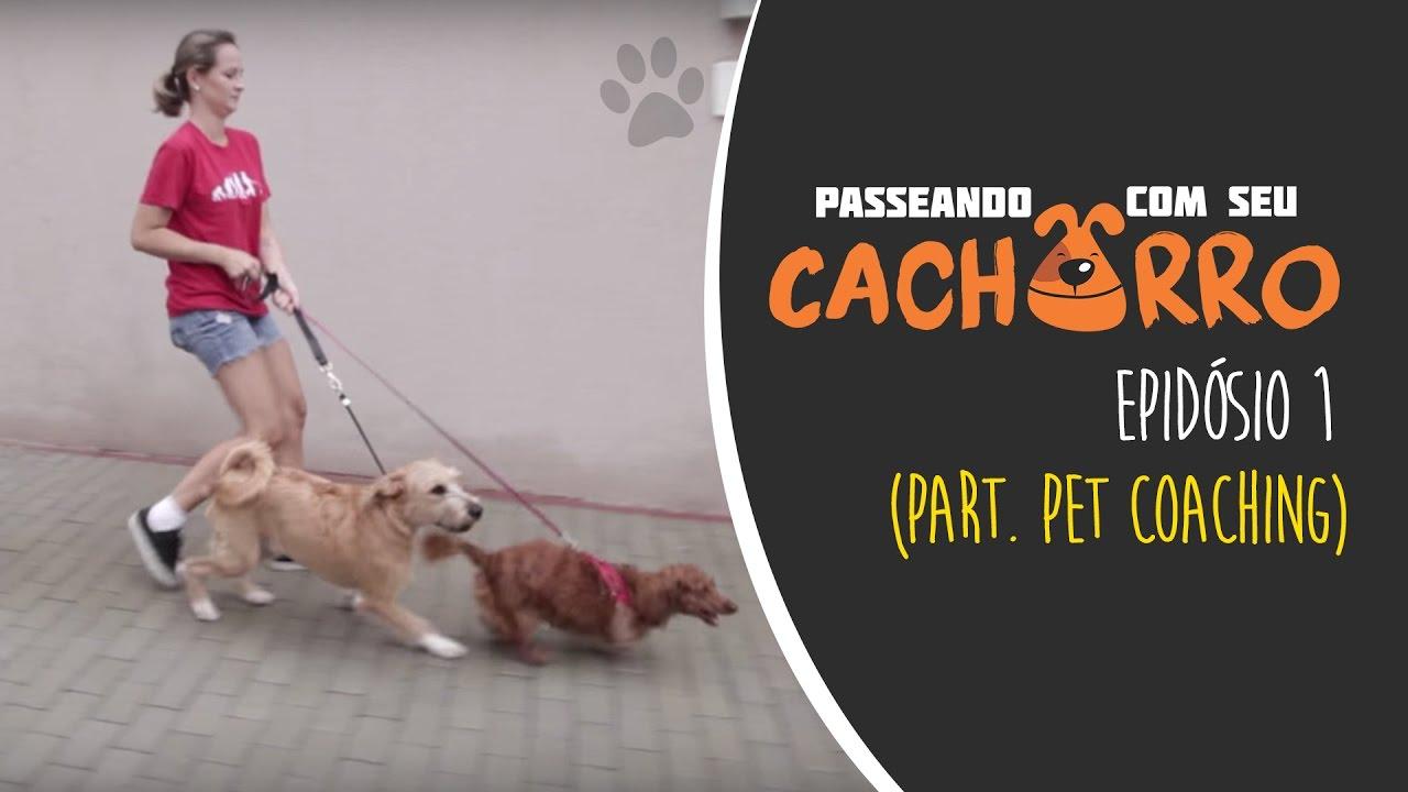 Ju Almeida Pet - Passeando com meu Cachorro Ep - 01