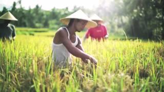 Agribank Lâm Đồng