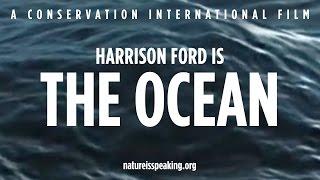 The Ocean is Speaking