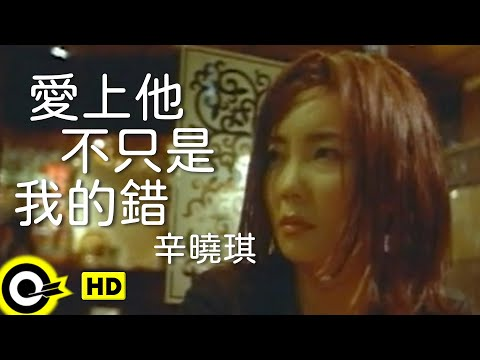 辛曉琪 Winnie Hsin【愛上他不只是我的錯 It's not only my fault to love you】Official Music Video