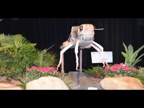Pictures of San Francisco Flower and Garden Show, San Mateo, CA, USA
